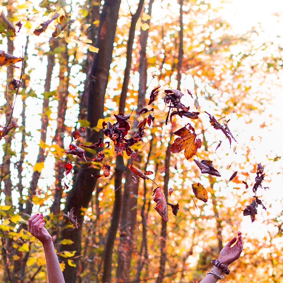 Freude Pur! Herbstlaub!